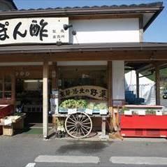 [日本料理]志野松門