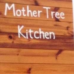 [カフェ]Mother Tree Kitchen